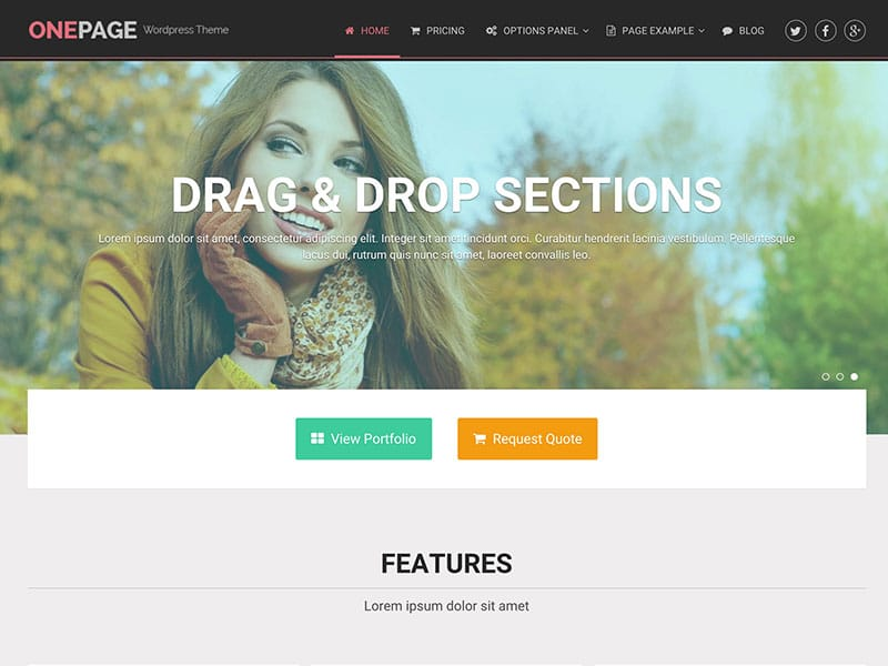 onepage-wordpress-theme