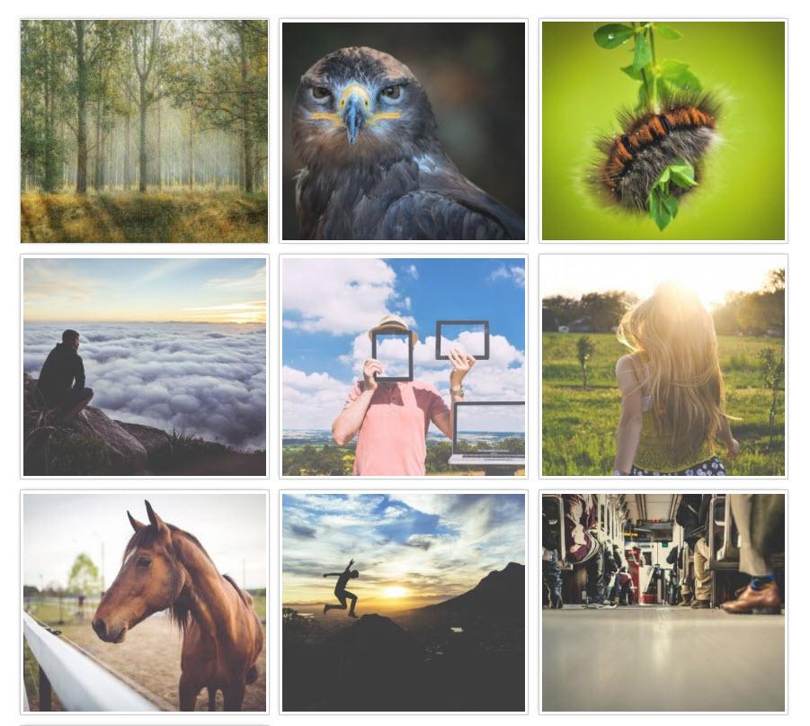 WordPress photo gallery plugins: Gmedia Photo Gallery
