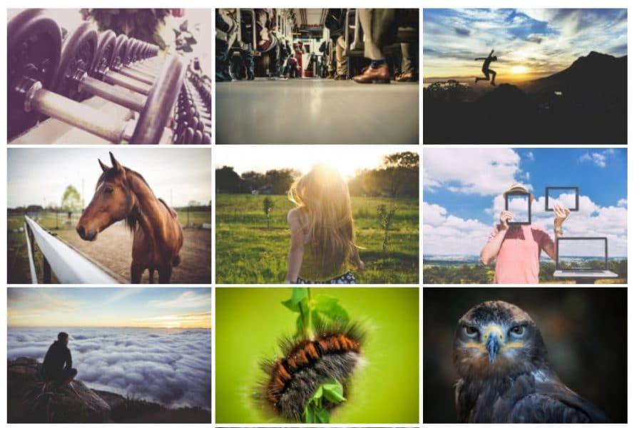 WordPress photo gallery plugins: NextGEN Gallery