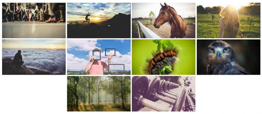 WordPress photo gallery plugins: Photo Gallery by 10Web