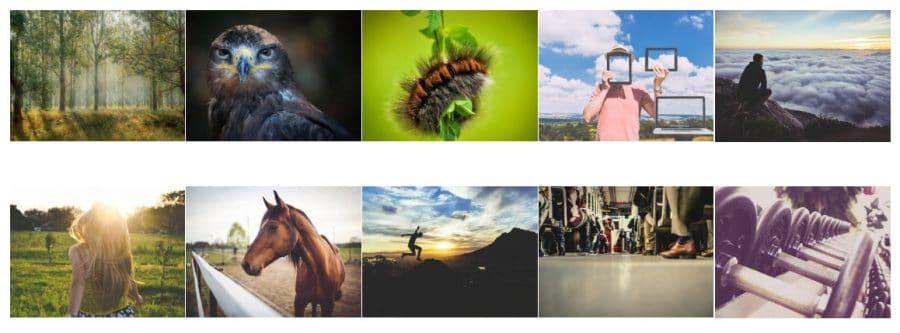 WordPress photo gallery plugins: Envira Gallery
